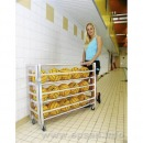 Water polo ball storage trolley